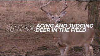 Ep. 4 - Aging And Judging Deer In The Field | QDMA's Deer Hunting 101