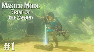 HERE WE GO AGAIN: Trial of the Sword MASTER MODE EDITION #1