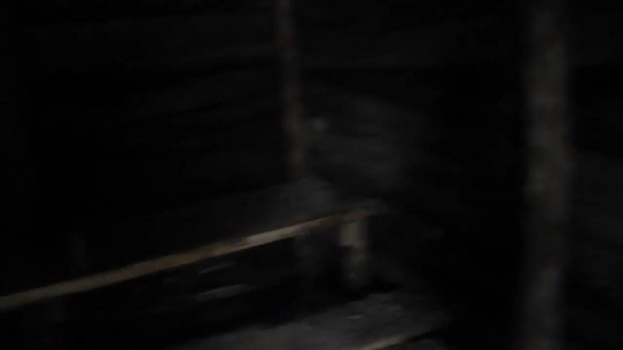Веломандрівка до криївки УПА «Білого» в с. Микитинці: фото ...