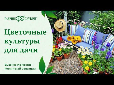 Какие цветы выращивать на дачном участке?