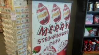Merry Strawberry Cake Japan-glish!