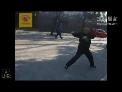 SanHuangPaoChui Kung Fu SanLu (Third Form)