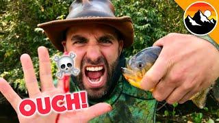 EATEN ALIVE - Human Hands vs. Piranha!