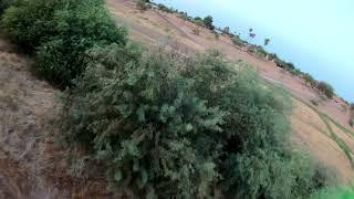 The Adam song from blink 182. fpv flight with the ummagawd acrobat. #ummagawd #acrobat #djifpv