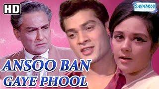 Ansoo Ban Gaye Phool {HD}  Ashok Kumar  Nirupa Roy  Pran  Deb Mukherjee  Old Hindi Movie
