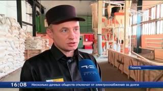 В тюменской ИК-2 начали производство круп