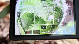How I Shoot - Canon T4i/T5i Tips and Tricks