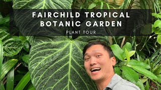 Plant Tour Of Fairchild Tropical Botanic Garden In Miami Florida | Ep 24