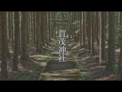 [4K]京都のパワースポット 賀茂神社 ~Kamo Shrine Kyoto Japan~ 【TY CINEMAS】