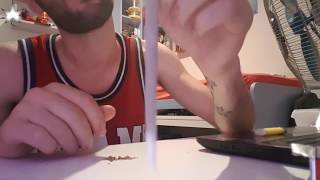 Tutorial #1 Joint a due cartine