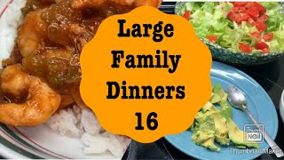 Large Family Dinners 16