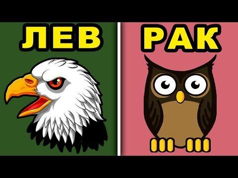 Какая Ты Птица по Знаку Зодиака