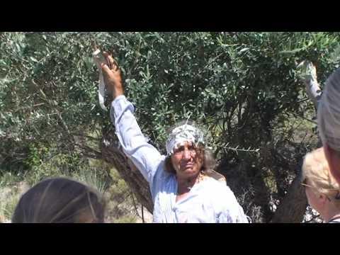 nikos papas Rhodos 2009 (deel2/5)