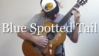 Blue Spotted Tail - Fleet Foxes (Fingerstyle Guitar Cover)