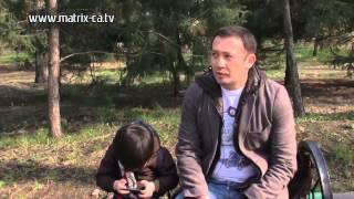 Всемирная паутина: как не запутаться детям (240)