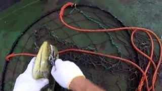 Рыбалка в Тихом океане(ваху,акула,тунцы,дорадо и немного кальмара)