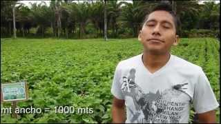 preview picture of video 'Centro Investigacion AGRONOMIA.qt'