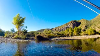 Fly Fishing for Trout on the Salt River!