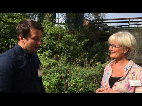 Video fra seminaret, inklusiv intervju med Hy5 og Norsk Landbrukssamvirke, fra 01:15. Video: SINTEF