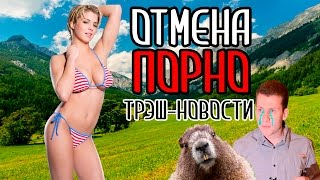 #Трэш Новости: Порно как наркотик, атака бобра, Кокорин в физруке и кавер на Hotline Bling