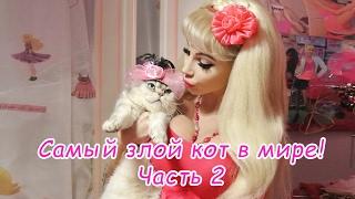САМЫЙ ЗЛОЙ КОТ В МИРЕ! Часть 2 Таня Тузова Русская Барби