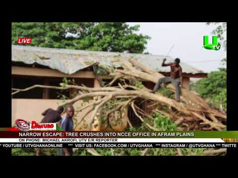 Narrow Escape: Tree Crushes Into NCCE Office In Afram Plains