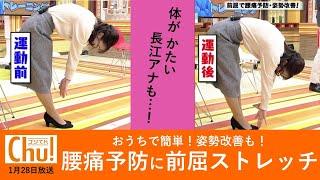 腰痛予防に前屈ストレッチ!「ブンケンストレッチ&トレーニング」