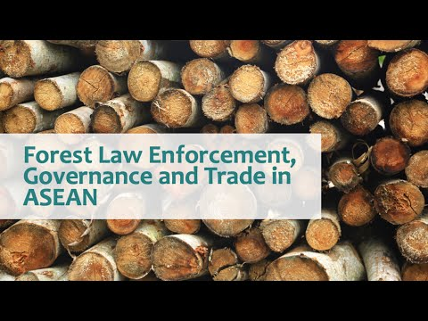 Forest Law Enforcement, Governance and Trade in ASEAN (FLEGT ASEAN)
