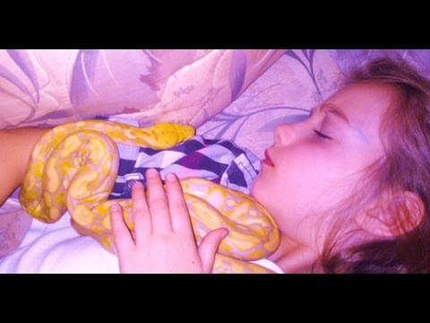 8 Yr. Old Girl Obsessed With SNAKES? Mp3