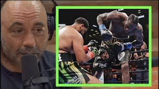 Joe Rogan Reacts To Deontay Wilder KO'ing Dominic Breazeale