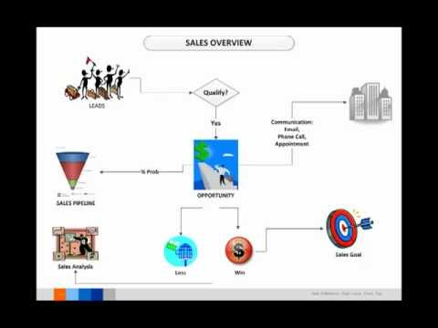 Microsoft Dynamics CRM Sales Process Management