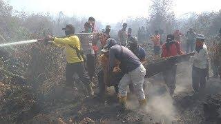 Kebakaran Lahan di Bengkalis, Petugas Butuh Alat Tambahan untuk Padamkan Api