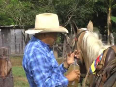 Un Guayabo Pasajero - Julio Pantoja  (Video)