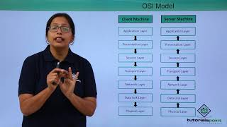 Network Protocols - OSI Model
