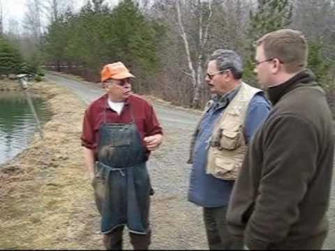 Rainbow Trout Farm Pond Fishing – Thorndike Maine