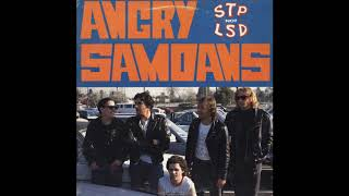 Angry Samoans ‎– STP Not LSD (Full album 1988)
