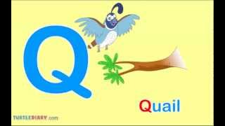 Toddler Words | Words Starting With Q