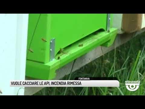 TG PADOVA (04/10/2019) - VUOLE CACCIARE LE API, INCENDIA RIMESSA