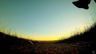 SNi-FPV - Flight of the day - Golden wheat fields