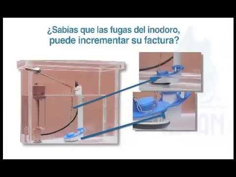 Como arreglar el vientre por los ejercicios en las condiciones de casa con las estampas