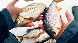 Рыбалка на горе море 2019-2019