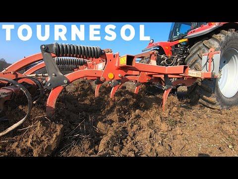 Un sol tassé à reprendre pour semer le tournesol - 2021 Un sol tassé à reprendre pour semer le tournesol - 2021