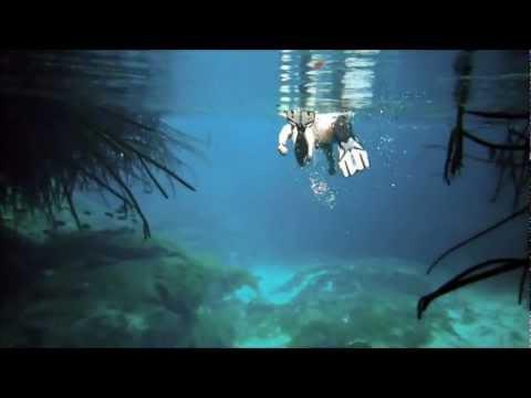 Snorkeling Cenote Manatee & Gran Cenote in the Yucatan, Mexico