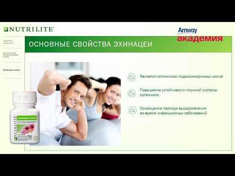 Печень симптомы и лечение травами