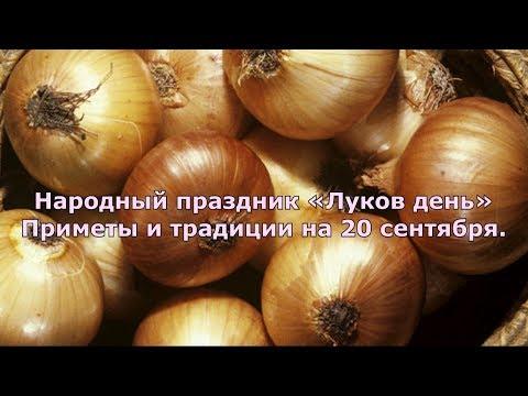 20 сентября.  «Луков день». Приметы и традиции.
