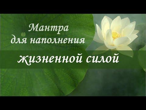 Цитата горе от ума счастья