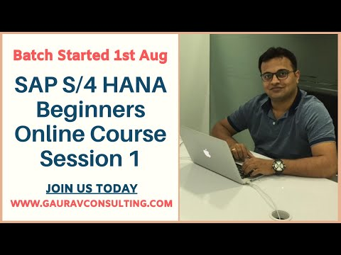 SAP S/4 HANA Beginners Online Course started 1 Aug (Session 1 Recording)