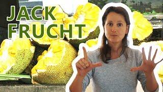 7 wichtige infos zur JACKFRUCHT + Verzehrtipp