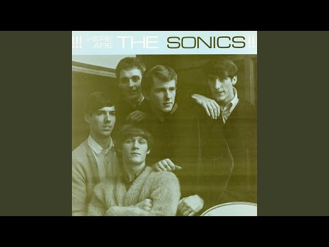 The Sonics - Have Love, Will Travel
