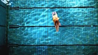 4 Strings - Diving [HQ/1080p]